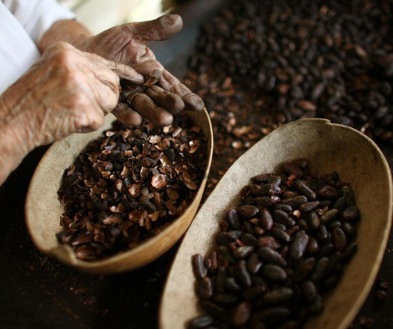 <div>La Hacienda Buena Vista ofrece un tour de café.</div>