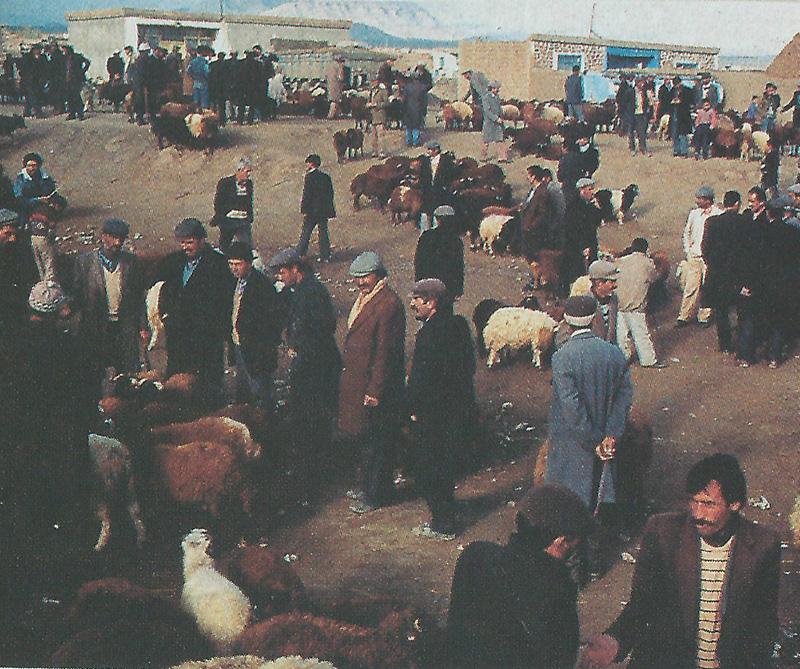 PASTORES NÓMADA. El pueblo kurdo está compuesto en su mayoría por pastores nómadas que desplazan sus rebaños por alrededores de la cordillera del Kurdistán, región Hakkari.