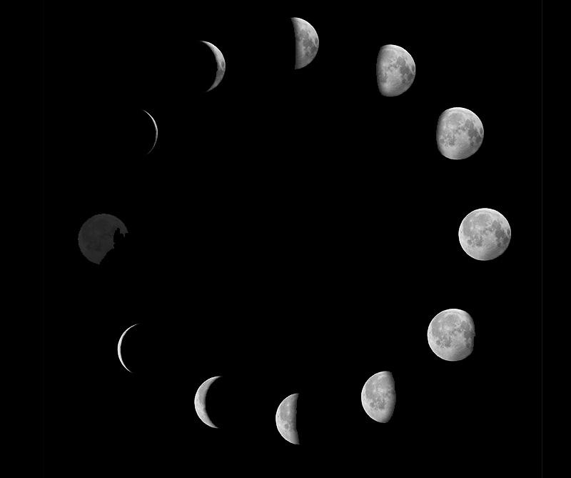 C mo influyen las fases de la luna en los tratamientos de for Ciclo lunar julio 2016