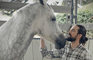 caballos1_800x669