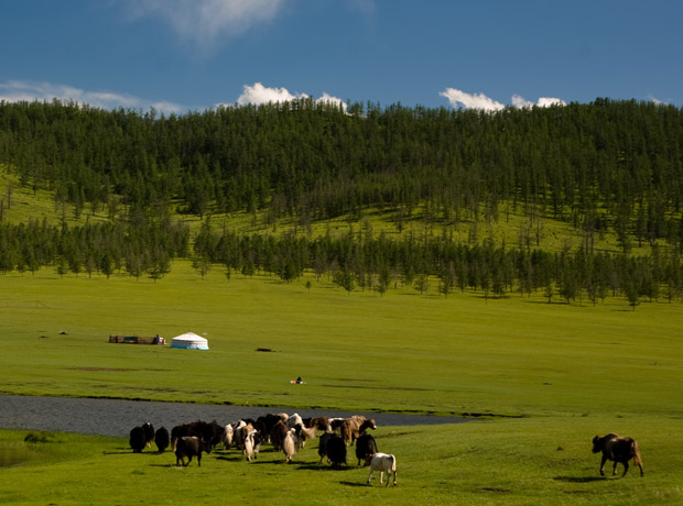 tsenkher_hot_spring_mongolia