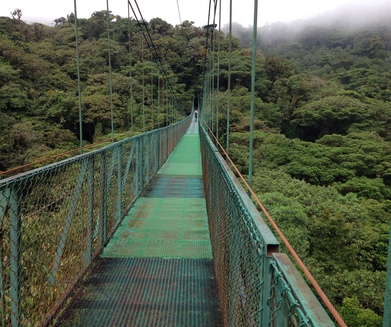 La reserva ecológica de Monteverde es la meca para practicar canopy
