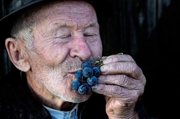 """<div>Categoría vino, """"Joy of a farmer"""" Autor: Gianluca de Bartolo de Italia.</div>"""