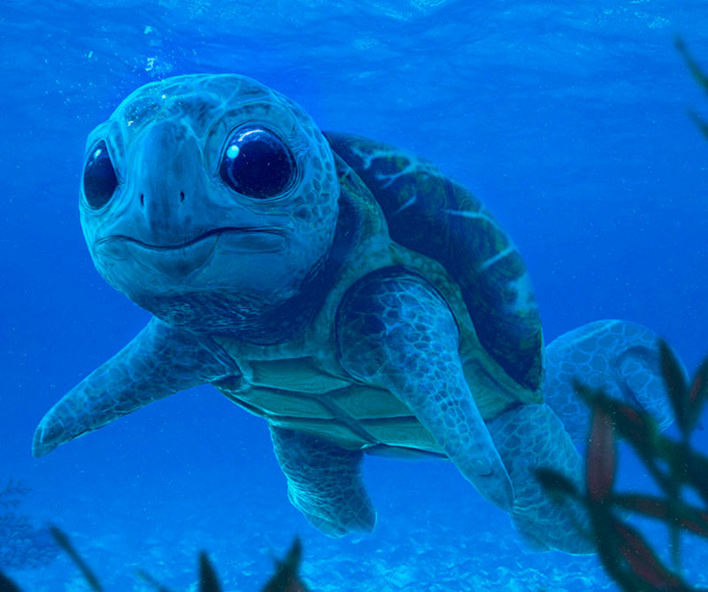 Squirtle.