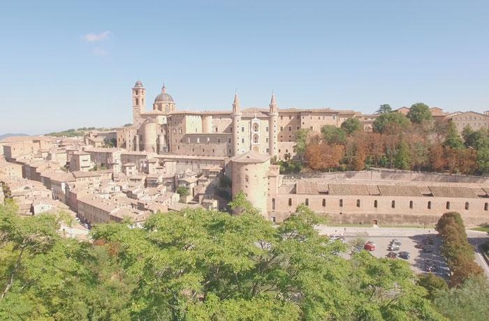 <div>Urbino.</div>