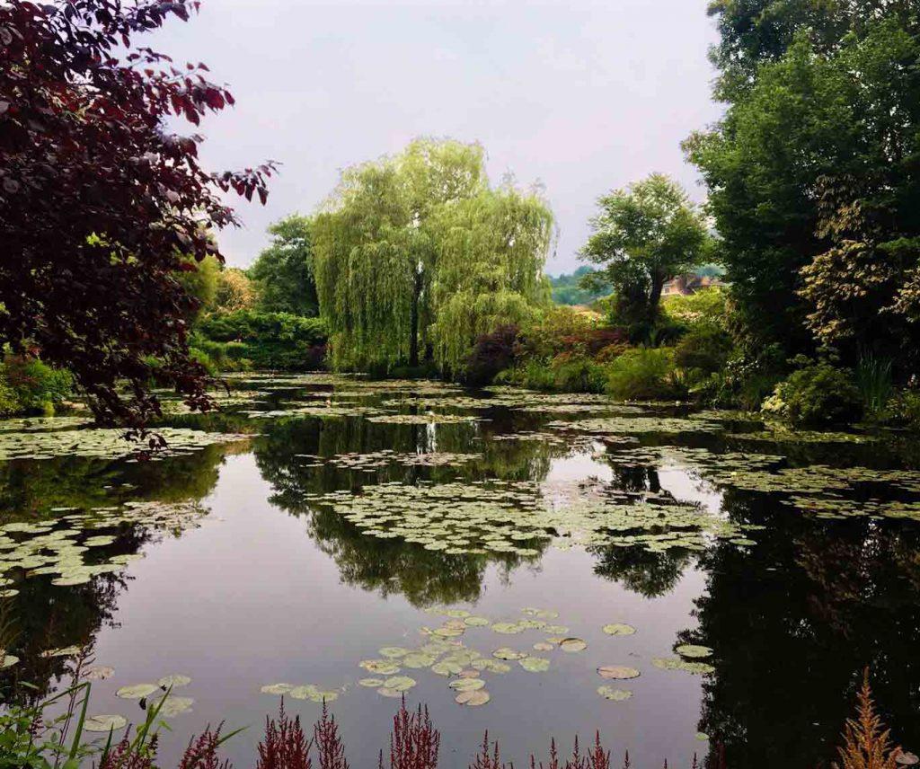 Del 16 al 19 de mayo se proyecta El jardín secreto de Monet, un documental que indaga en la vida de este genio impresionista.