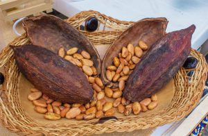 Mercado Agroecológico del Otún