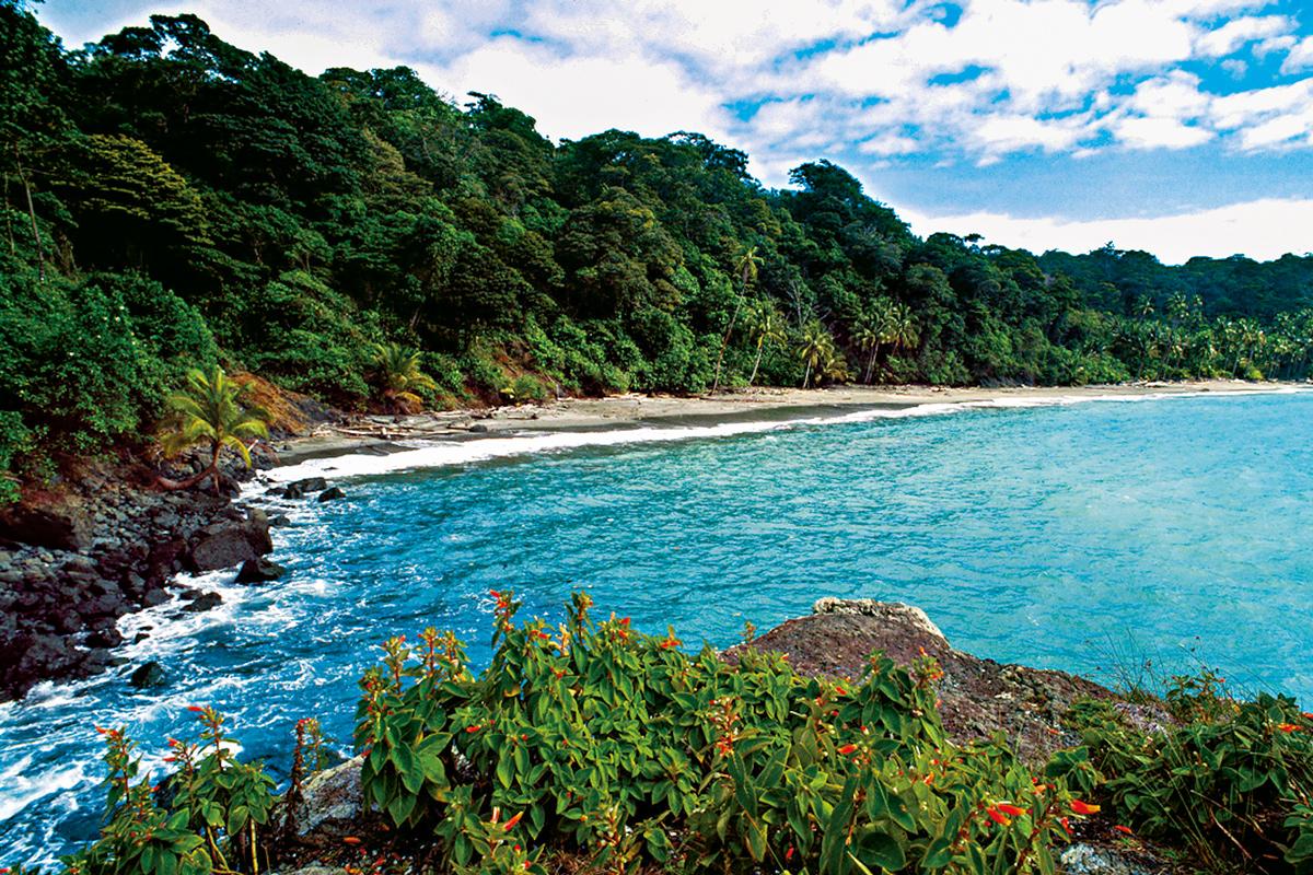 Isla de Gorgona: una joya natural en el Pacífico colombiano