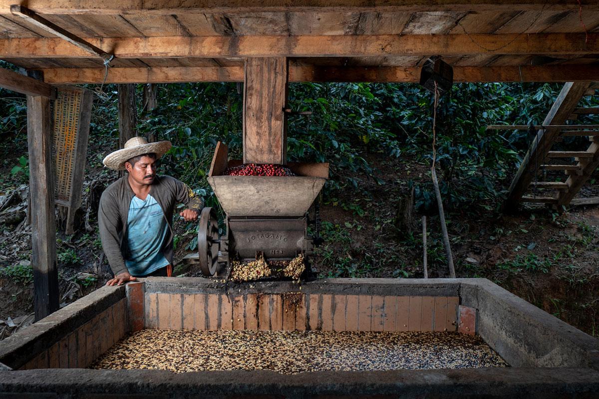 Esperanza de Colombia, Nespresso