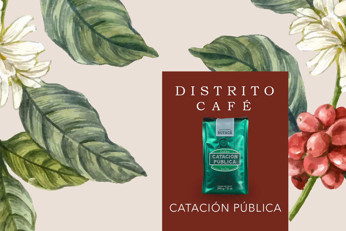 Distrito Café, Catación Pública