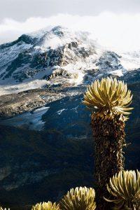 Nevado del Ruiz Manizales
