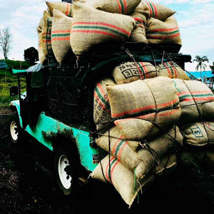 carga de café Irrúa